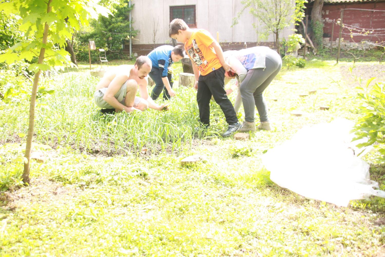 Radionice vrtlarstva
